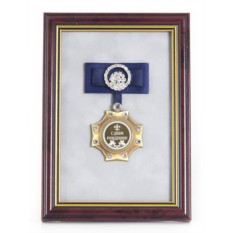 Орден в багете с синим бантом С Днем Рождения!