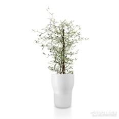 Белый горшок для растений с функцией самополива d13 см