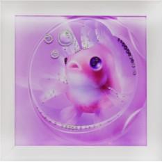Картина с кристаллами Сваровски Рыбка моя