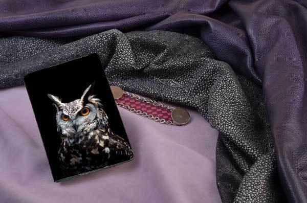 Горизонтальный кардхолдер Сова на тёмном фоне