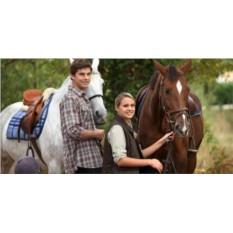 Сертификат Романтическая прогулка на лошадях