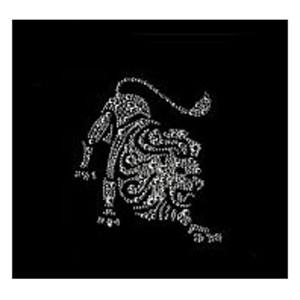 Хрустальная картина «Лев»