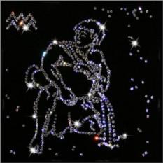 Картина с кристаллами Swarovski Водолей