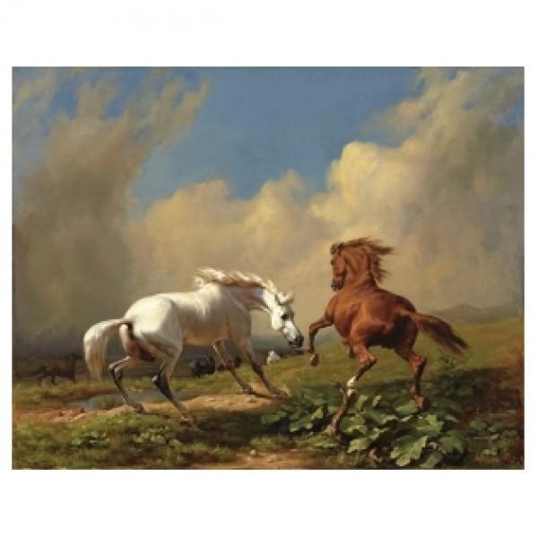 Картина-раскраска по номерам на холсте Кони в поле