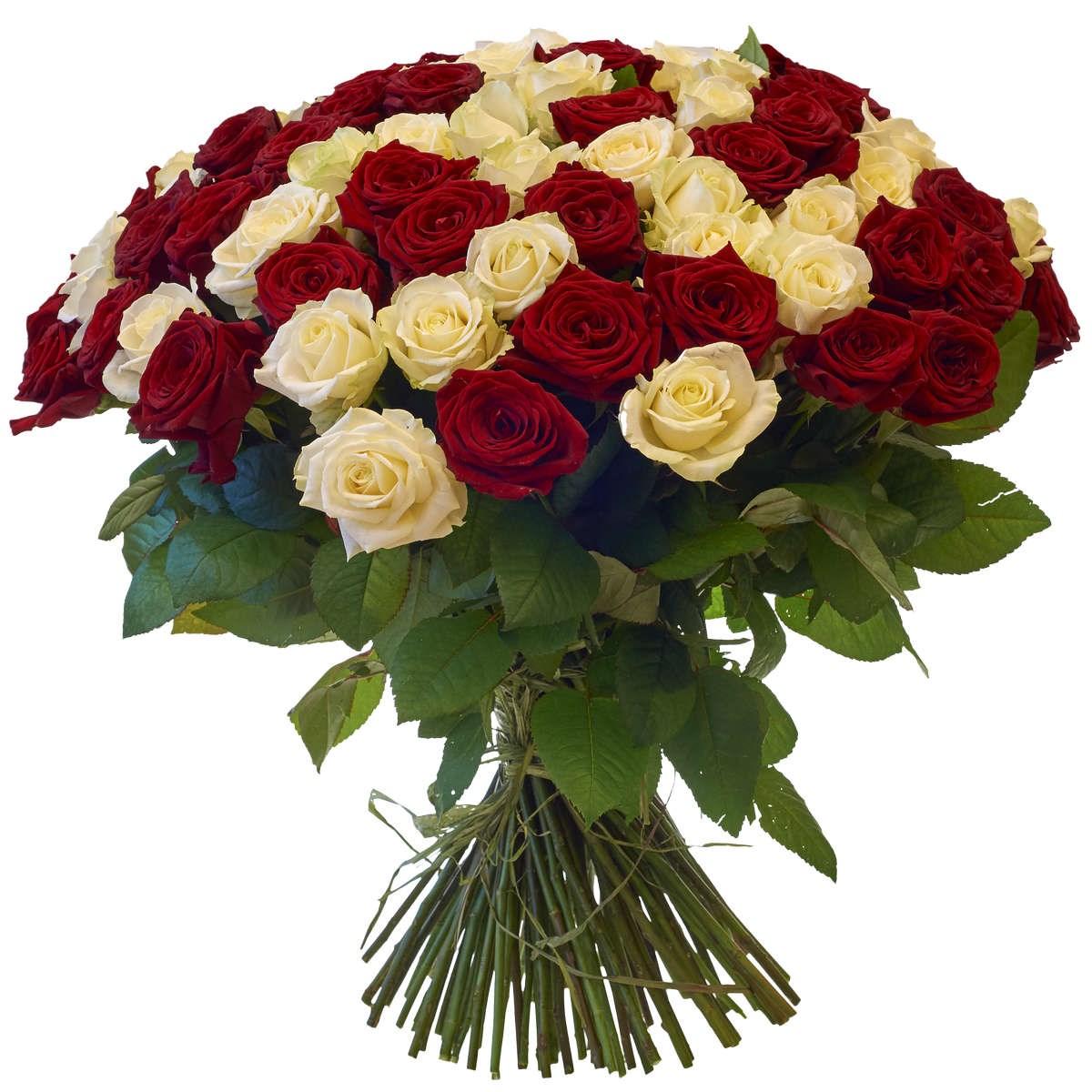 Розы букеты красивые фото