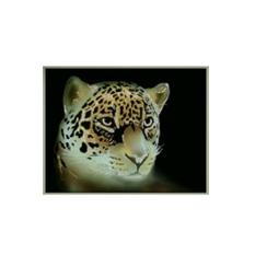 Картина из кристаллов «Тигренок Симба»