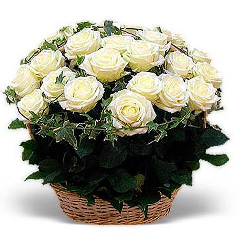 Корзина 51 белая роза