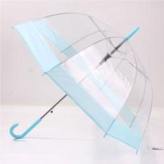 Зонт прозрачный с цветной каймой (цвет: голубой)