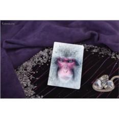 Обложка для паспорта / автодокументов Взгляд снежной обезьяны