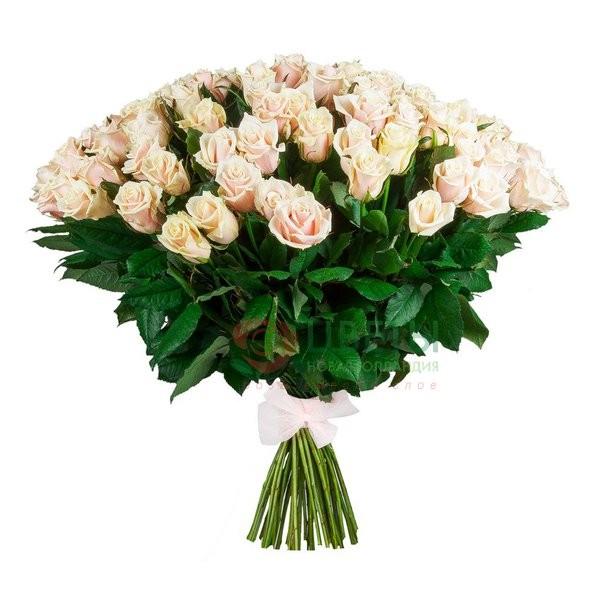 Букет роз Talea (101 шт)