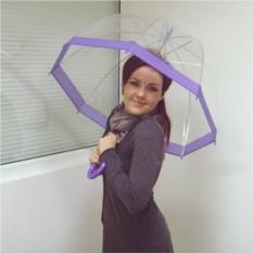 Прозрачный зонт-купол с с фиолетовой окантовкой