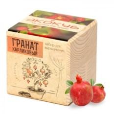 Набор для выращивания растения Гранат карликовый