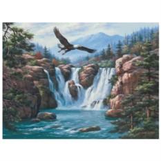 Картина-раскраска на холсте по номерам Парящий орёл