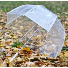 Зонт Стеклянный купол