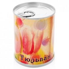 Цветок в банке (набор для выращивания)