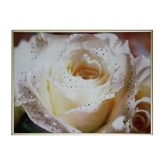 Картина Swarovski Чайная роза