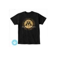Детская футболка Министерство магии