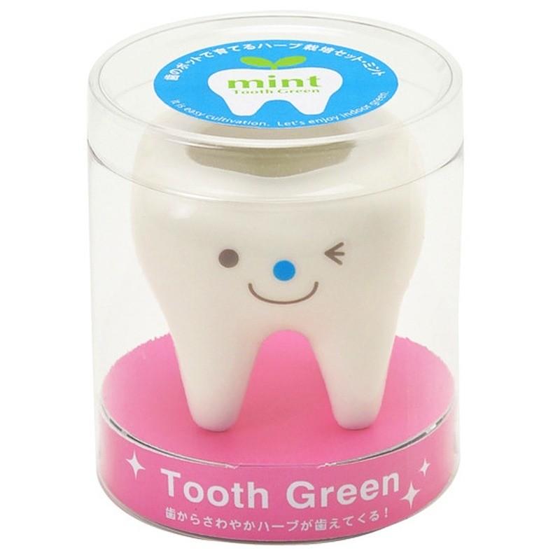 Набор для выращивания мяты Tooth Green