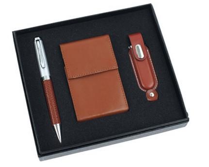 Набор: шариковая ручка, визитница и флеш-карта USB 2