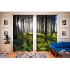 Фотошторы Восход в лесу