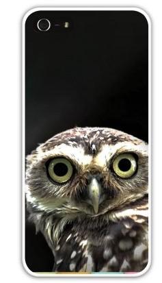 Чехол-накладка для iphone 5/5S, сова