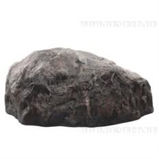 Камень с динозаврами
