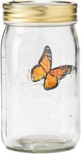 Бабочка в банке Тигровый парусник (Желтая)