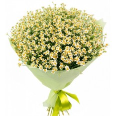 Букет цветов Василиса