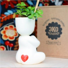 Набор для выращивания EcoMan Yogi in Love