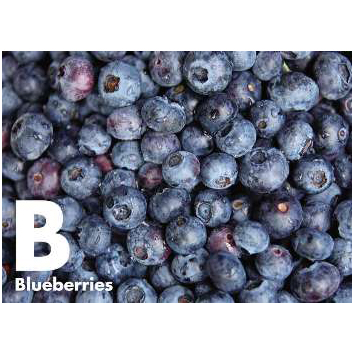 Открытка Blueberries