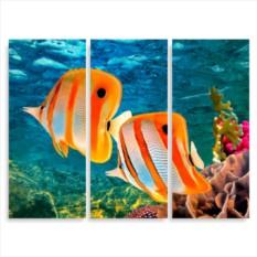 Модульная картина Большой Барьерный риф