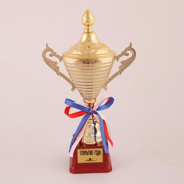 Кубок Открытие года