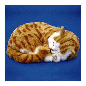 Perfect Petzzz Оранжевый Тэбби