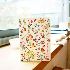 Ежедневник Nana diary