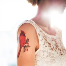 Татуировка переводная Sasha Unisex Cardinal