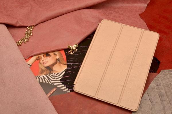 Чехол для iPad Air 2 (тип книжка) «Медная Акара»,
