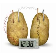 Часы на овощной батарейке