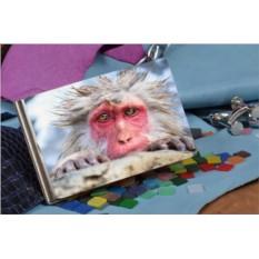 Зажим для денег Снежная обезьяна