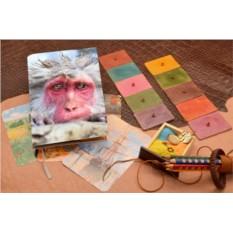 Кожаный белый ежедневник Снежная обезьяна Elole Design