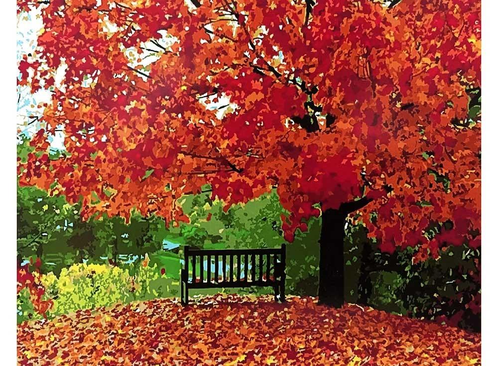 Картины по номерам «Осенняя пора»
