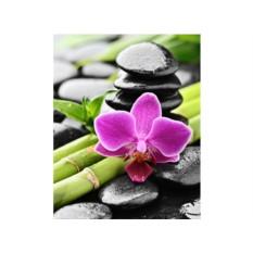 Алмазная вышивка Орхидея и бамбук
