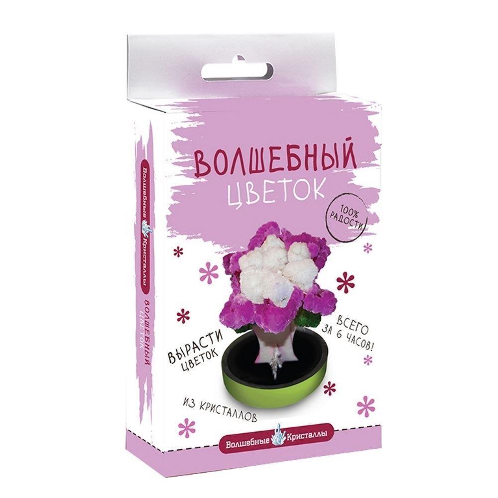 Набор для выращивания Волшебные кристаллы Пурпурный цветок