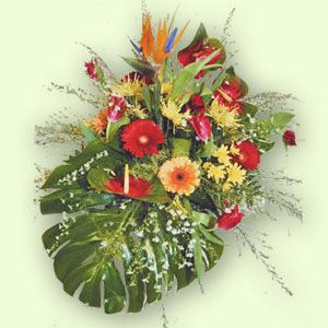 Букет цветов «Голиаф»