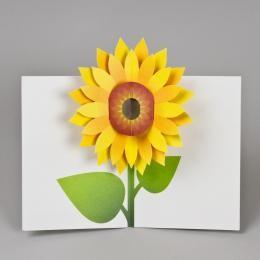 Подарочный набор дизайнерских открыток «Подсолнух»