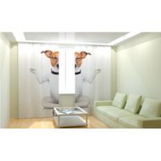 Фотошторы Медитирующий пёс