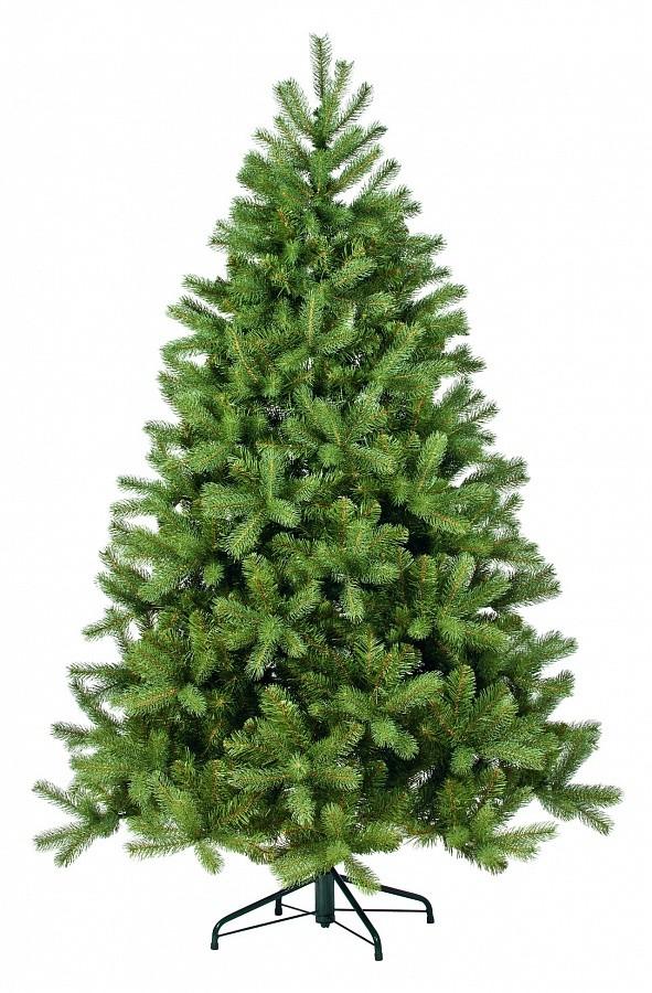 Ель black box Снежная королева зеленая, 155 см.