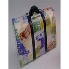Копилка Саквояжик с деньгами