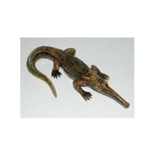 Шкатулка «Крокодил»
