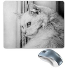 Коврик для мышки У окна