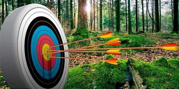 Сертификат Стрельба из лука для взрослых и детей